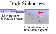 Back Siphonage low pressure in potable system vs normal pressure in non-potable system